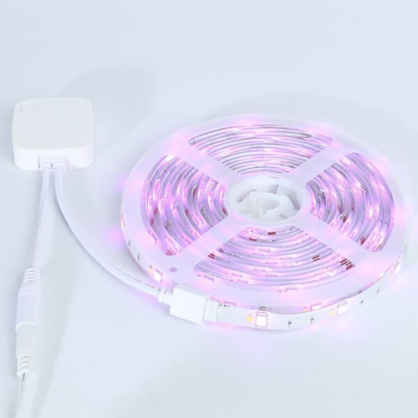 LED Strip Light Kit RGBW | Music WiFi